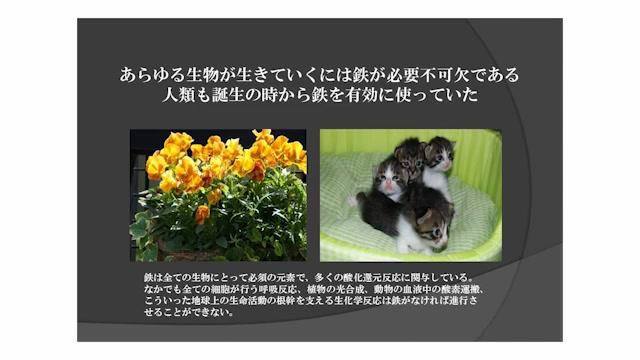 03_mizuguti_01_01_04.jpg