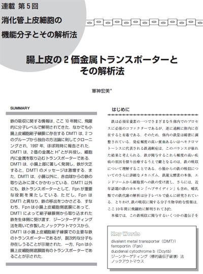 消化管上皮細胞の機能分子とその解析法 第5回(軍神宏美:Dr. Hiromi Gunshin)